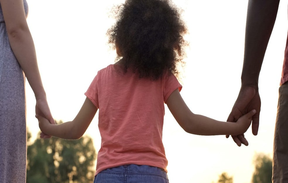 Adoção direcionada: o princípio da proteção integral do menor